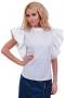 Shirt Poly 002191 1