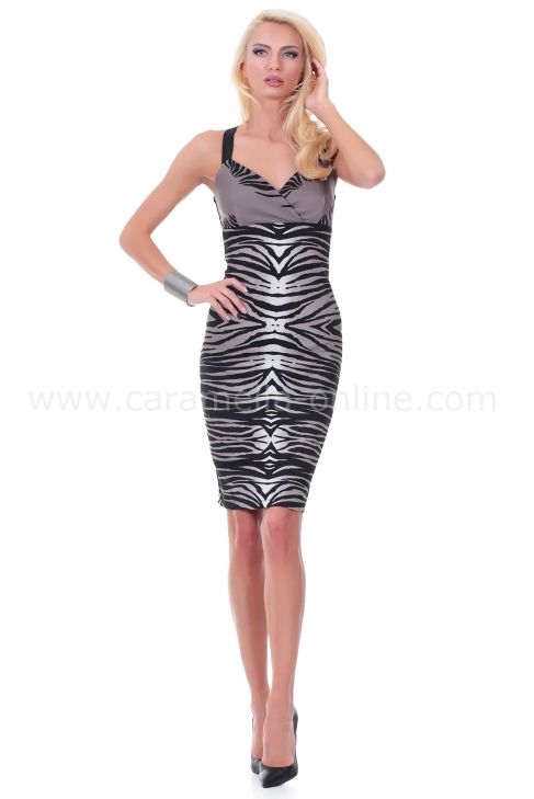 Dress Zebra Woman 012025