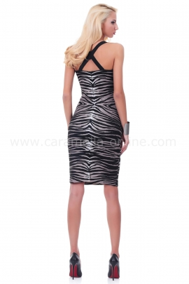 Dress Zebra Woman