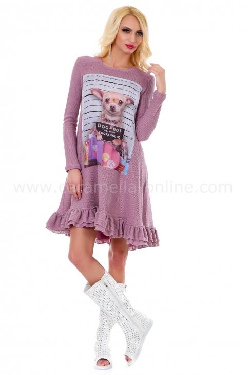Dress Chihuahua 012080