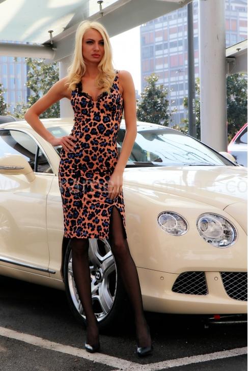 Dress Pink Leopard 012086