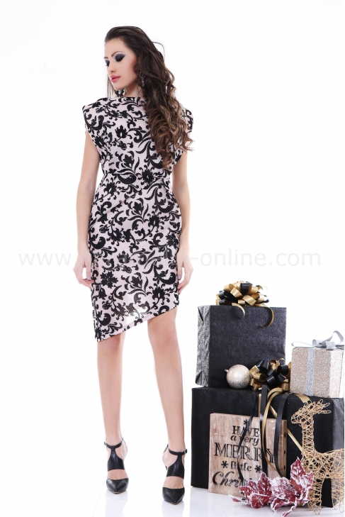 Dress Sweet Girl 012212