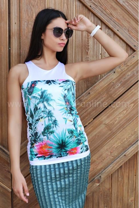 Top Tropical Parrot 022211