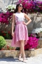 Skirt Pink Lace 032066 1