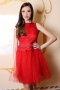Dress Red Lace 012429 2