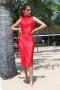Dress Pink Panter 012454 3