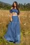 Сет Blue Lilly 082195 2